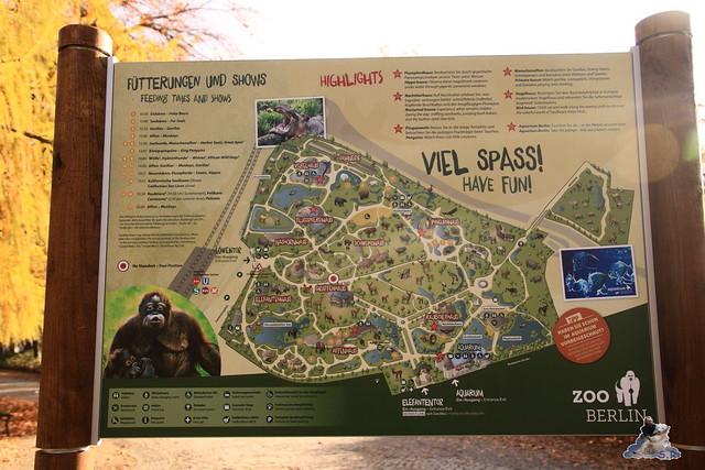 Zoo Berlin 08.11.2015  014