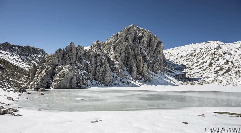 صور نادرة للطبيعة الجزائرية - صفحة 16 31349285264_fa236651b2_b