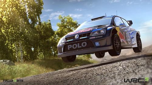 WRC 5 Polo