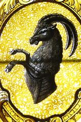 Capra ibex DT [CH Montreux] (4)