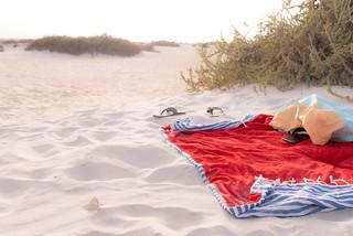 Obraz Dunas de Corralejo w pobliżu Corralejo. summer16 summer2016 islascanarias canaryislands fuerteventura cotillo parquenaturaldunascorralejo corralejo dunascorralejo dunas pájara betancuria ajuy barrancodelaspeñitas pozonegro jandía laoliva lajares illy playa beach ardillas squirrel cervezatropical tropical lumixgx7
