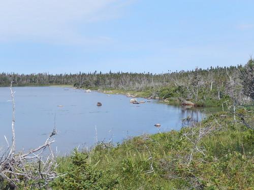 Gros Morne NP - Berry Head Pond - 1