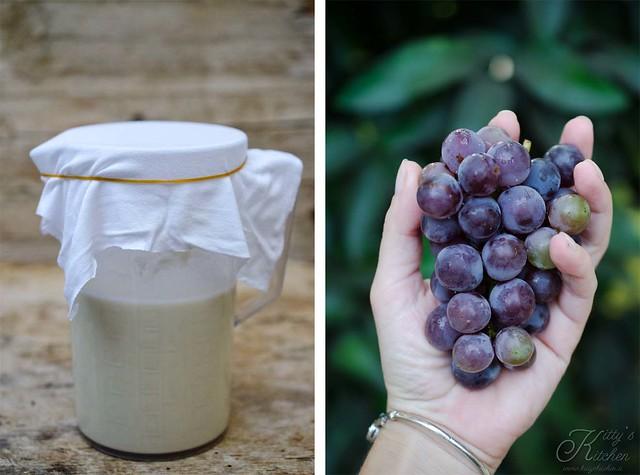 Lievito madre con l'uva_ (2)