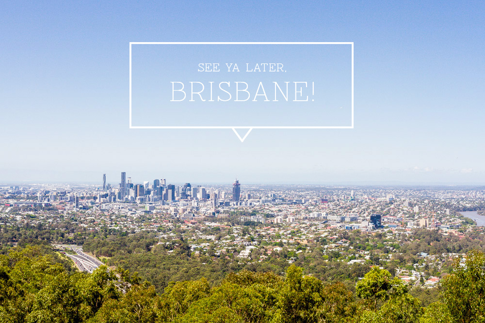 day trips from brisbane green, leafy, wildlife