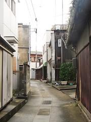 Mazy streets