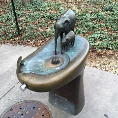 Water fountain with style at the zoo
