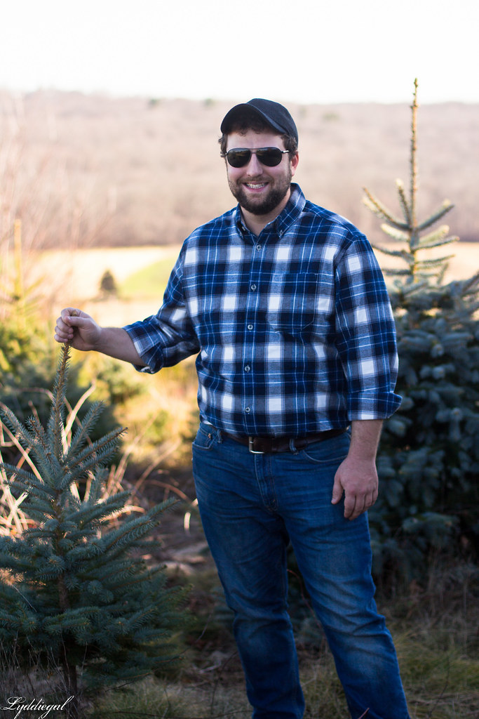 Sean Tree Hunt.jpg
