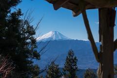 富士山@景信山