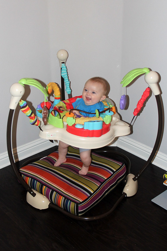 Finn in the jumperoo