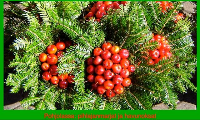 joulua kohti-jpg