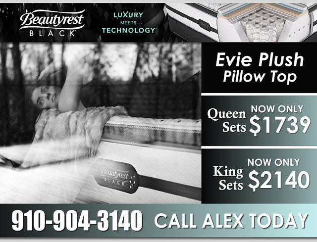 Evie Plush Pillow Top HQ New