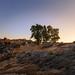 grootwintershoek sunset8