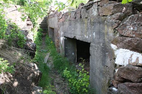 Bolærne fort (146)