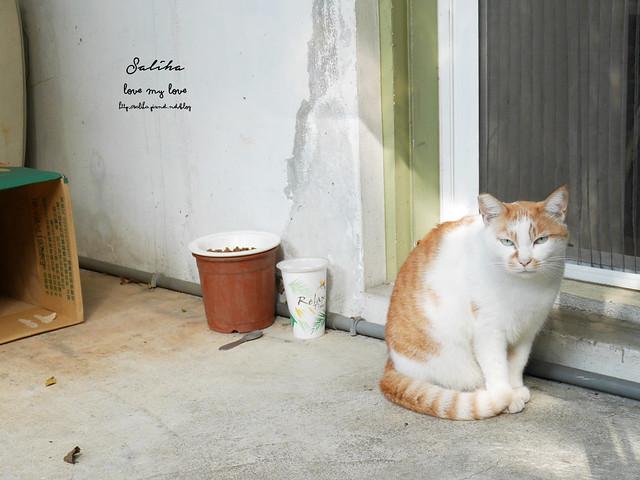 台北萬隆站早午餐推薦尋常生活小坊 (1)