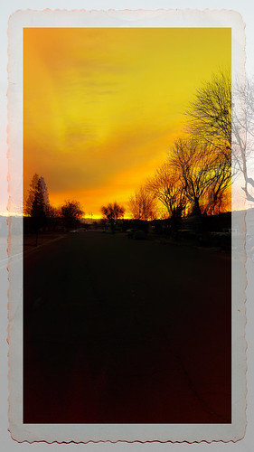 sunrise street trees kingsburg davemeyer sky