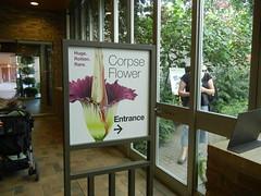 CBGSpike at Chicago Botanic Garden