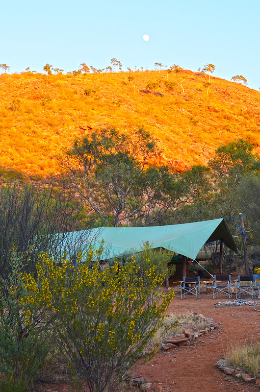 The Standley Chasm Private Camp - Larapinta Trail