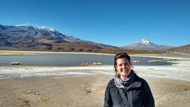 Laguna Arabilla, Parque Nacional Isluga, near Iquique, Tarapacá, Chile
