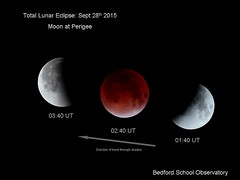 Lunar Eclipse from Bedford Observatory by LINTON GUISE