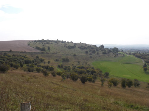 View back to Warden Hill, from Galley Hill