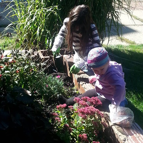 Young ladies planting tulip bulbs
