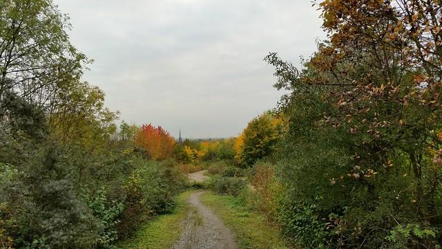 Herbst auffe Halde