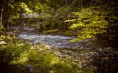 Valgejõgi river shoe