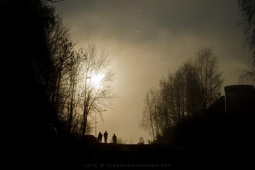 Misty Morning (i)