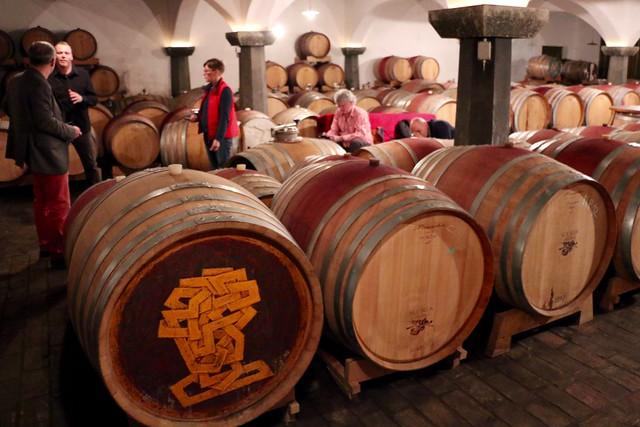 Goriška Brda (ŠČUREK Winery)