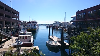 Harbor in Casco Bay