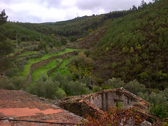 Terraces at Quinta da Corga
