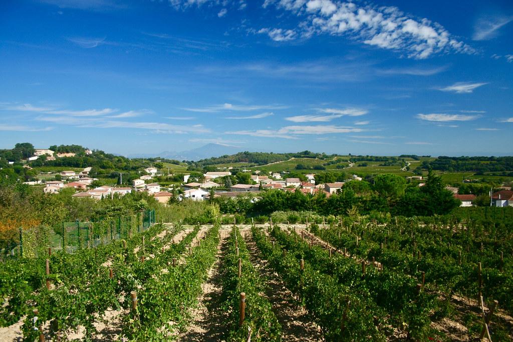 Landskap sett från Châteauneuf-du-Pape