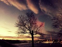 Georgetown at twilight