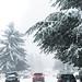 Let it snow, let it snow, let it snow, somewhere else😳