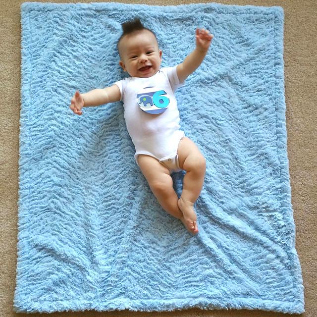 Parker's Six Month Photo | shirley shirley bo birley Blog