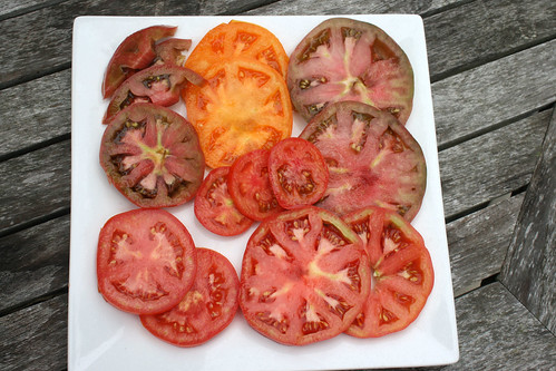 tomatoes sliced IMG_3618