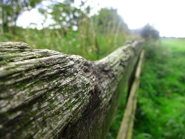 26 9 - Fence