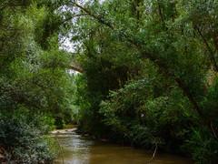 Puente Vadocondes