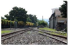 南投縣觀光旅行 2015 九月