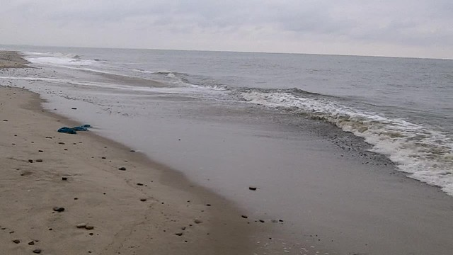 Northsea near Nymindegab