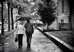 old love ...