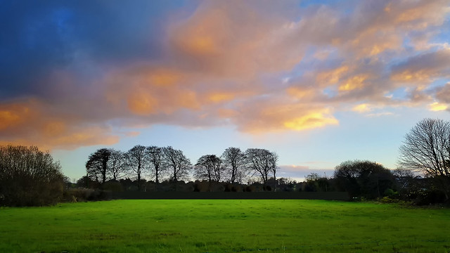 """Doug's Field at Sunset"""