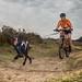 Bikejoring by haroldmeerveld