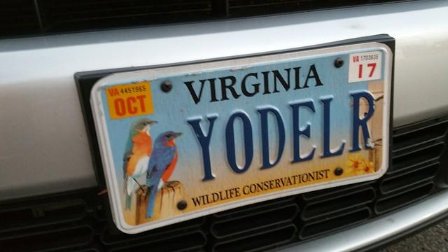 Header of yodeler