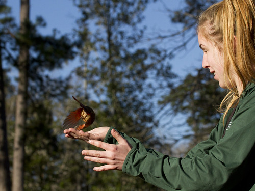 cardinalidae leeforest louisiana students