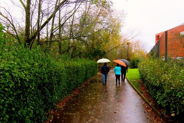 Lluvia, humedad y viento