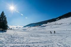 Plateau des Glières Février 2016