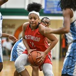 MLK Bash Westwood vs Dorman 1-14-17