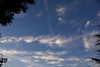 SE view of morning sky, high tropical clouds moving in.