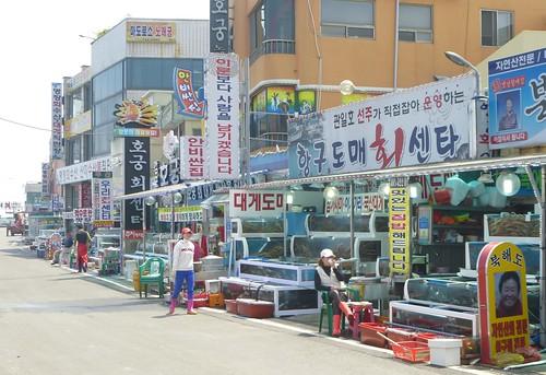 Co-Gyeongju-Côte Est-Gampo(8)
